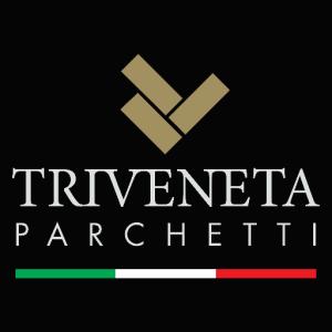 logo-triveneta2